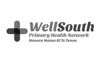 WellSouth case study logo